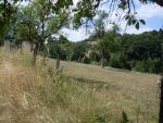 Prodej, pozemek – zahrada, 13.500m2, Lípa